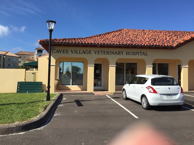 Exterior of the Veterinary Hospital at Caves Village Nassau