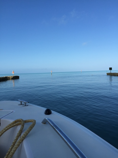 What a glorious day heading out of Davis Harbour