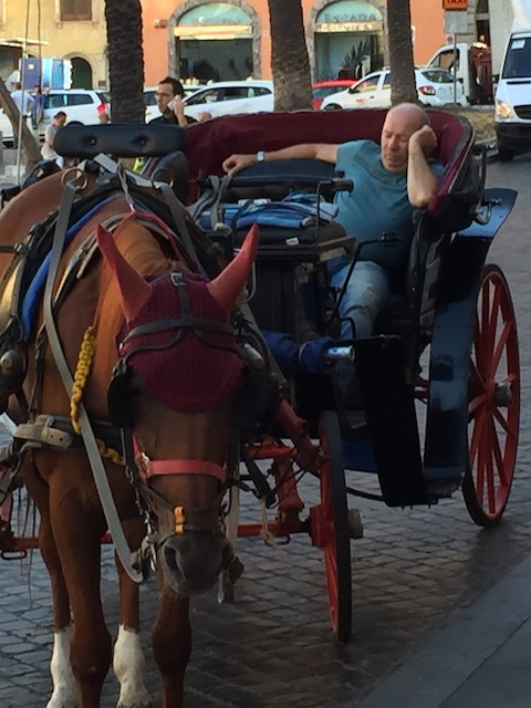 A bit too much of an early start for this caleche driver in Rome .....