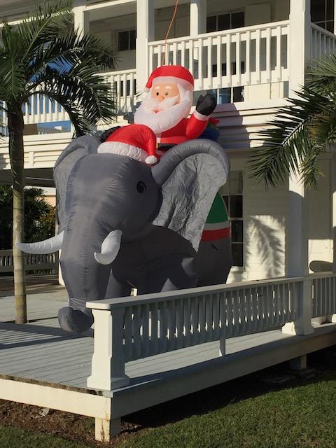 The elephant on the veranda !