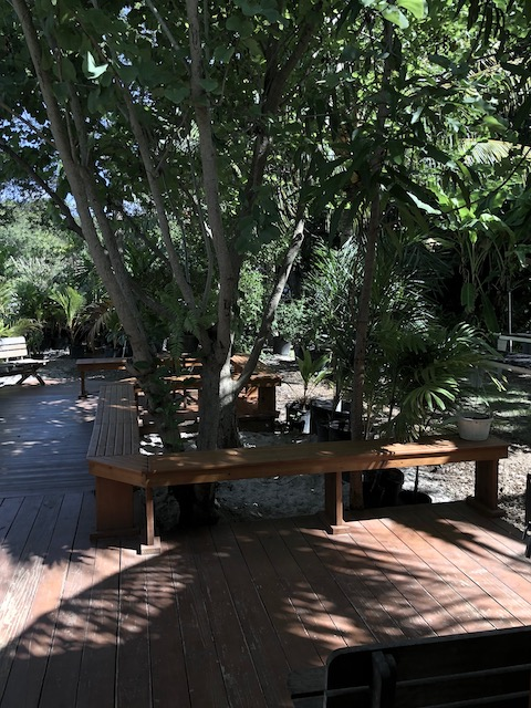 The lovely shaded seated area at the farm where you can enjoy a coffee whilst shopping....